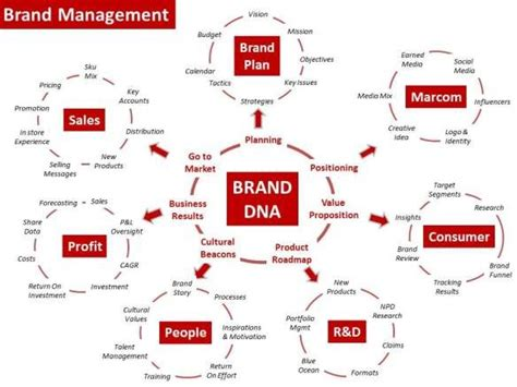 29 Best Brand Management Strategy Images On Pinterest