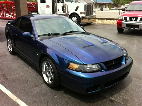 amazing mustang car 2004 ford mustang cobra for amazing
