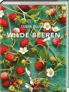 Wann Setzt Man Sträucher Um : erdbeeren ableger kleinegarten 11 erdbeeren bilden im ~ Articles-book.com Haus und Dekorationen