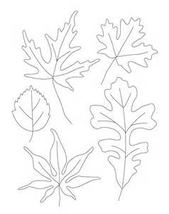 Leaf Contour Line Drawing