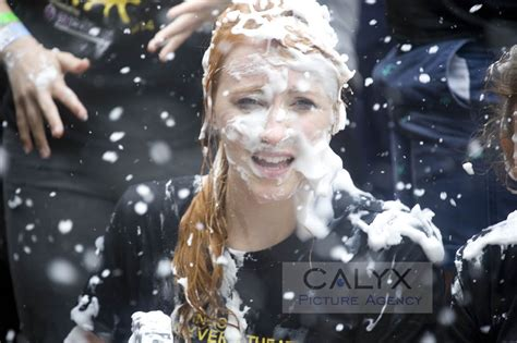 great custard pie fight calyx multimedia