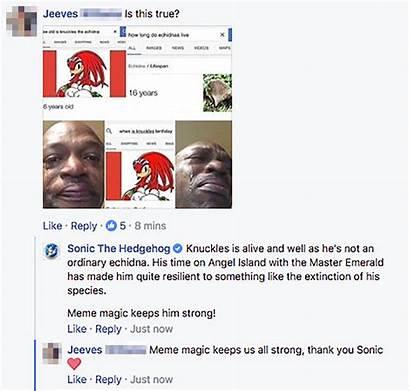 Meme Knuckles Echidna Age Lifespan Sonic Death
