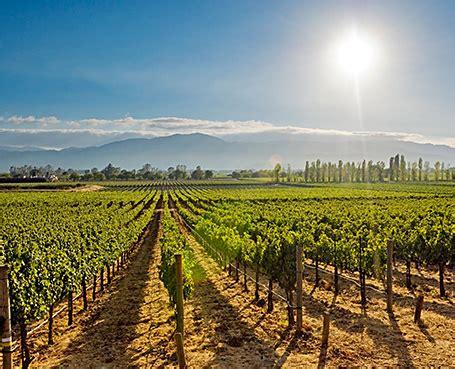 napa valley lodge wine country napa valley california