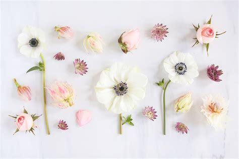 digital blooms march 2018 free desktop wallpapers justinecelina digital blooms february 2018 free desktop wallpapers