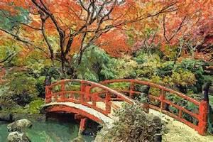 Jardin Dessin Couleur : jardin dessin couleur gosses sur piquenique dans vert ~ Melissatoandfro.com Idées de Décoration
