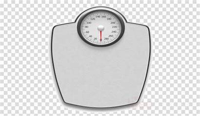 Scale Weight Clipart Measuring Loss Scales Peso