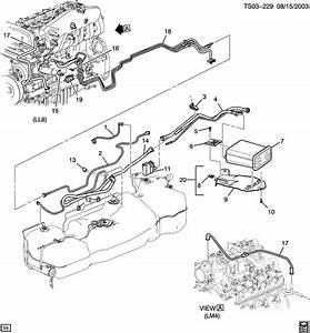 2004 Chevrolet Trailblazer Vapor Canister Lines