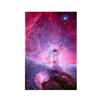 M42: The Center of the Orion Nebula