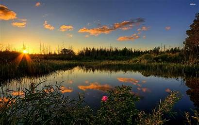 Pond Sunset Lake Clouds Trees Sunrise Desktop