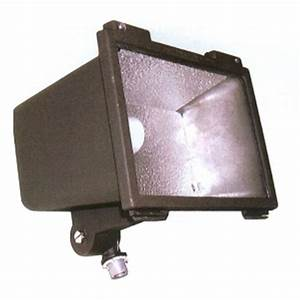 Morris wireguard for small floodlight