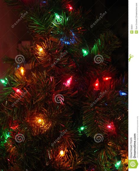 small tree and lights stock image image 35651