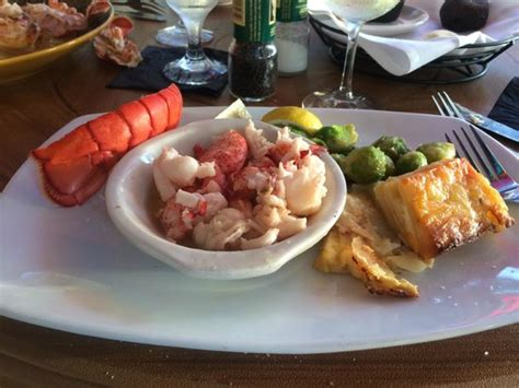 Lazy Lobster Longboat Key by Lazy Lobster Picture Of Lazy Lobster Of Longboat