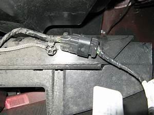 Tail Light Wire Identification Help Please
