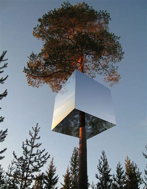 hotel in a tree has natural camouflage to reflect the forest