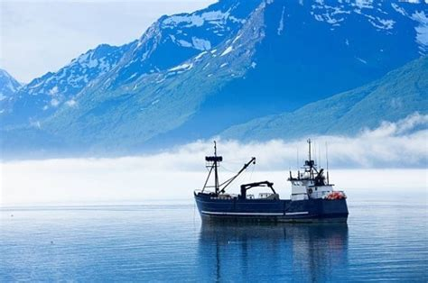 Fishing Boat Jobs Northern Ireland by Fishermen Are Required