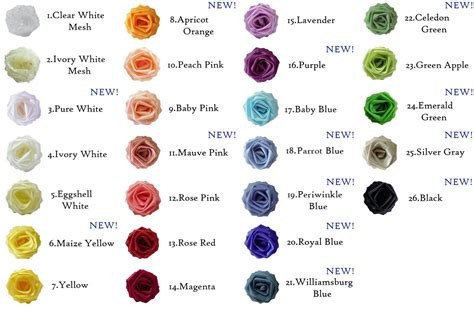 roses colors meaning our colors and meanings guide contains helpful hints