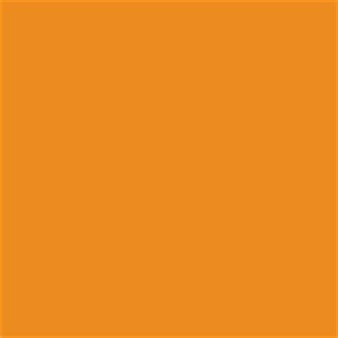 paint color sw 6895 laughing orange from sherwin williams
