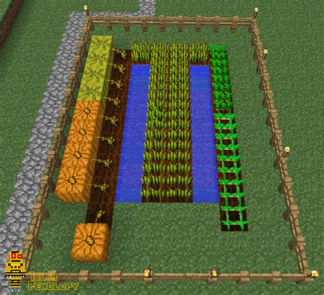 farming  minecraft  steps  pictures