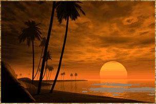 landschaft landschaften sonnenuntergang palmen und