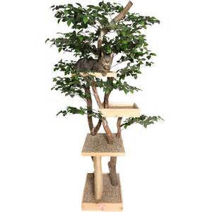 sycamore real cat tree nipandbones