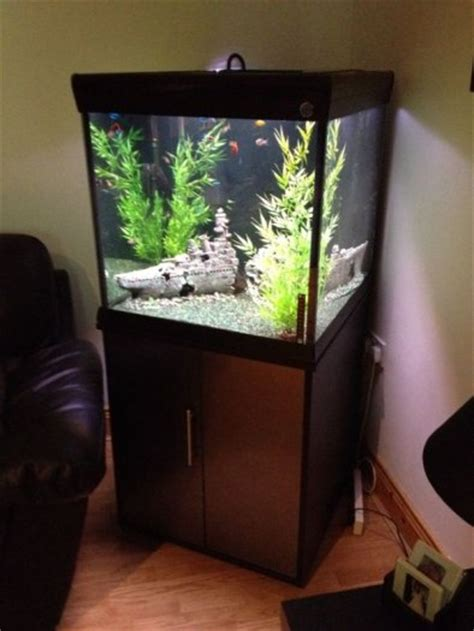aquarium cube 200 l penn plax empress cube 200l aquarium with cabinet canister filter heater and decorations for