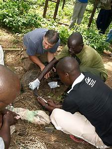 Trap Techniques: To Aid African Research | THE WILDLIFE ...