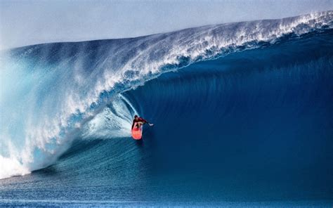 surfing windows  theme themepackme