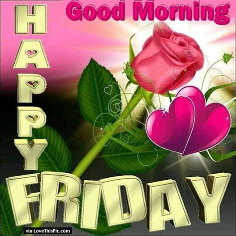 good morning happy friday pink roses pictures
