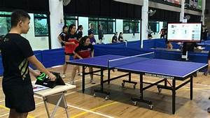 Table Tennis - Sports Arena  Table Tennis Sports