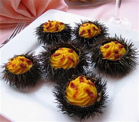 oursin cuisine recette manureva d 39 oursins notée 4 1 5