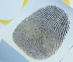 Background Check Criminal Records Free Criminal Criminal Record On Free Criminal Records Free