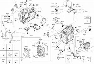 Lexus Ls400 Water Pump Diagram Wiring Diagrams Acura