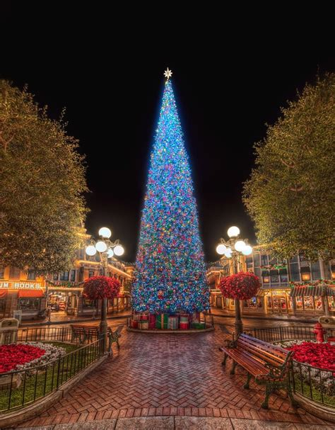 disneyland christmas tree disneyland pinterest