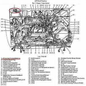Ford Windstar Diagram