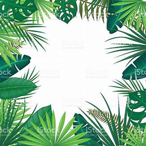 Vector Background With Tropical Leaves Stock Vector Art ...