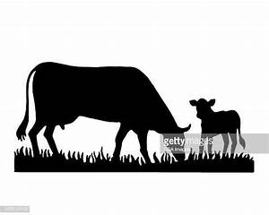 Calf Stock Illustrations And Cartoons Getty Images