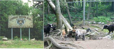 canada zoos largest popular most zoo animals brook cherry saint john brunswick place