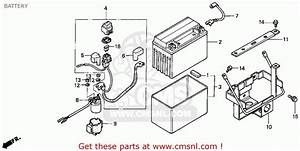 Battery Location On Honda 300 Fourtrax  Battery  Free