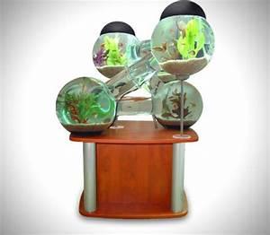 Aquarium Deko Ideen : tolles labyrinth aquarium ~ Lizthompson.info Haus und Dekorationen
