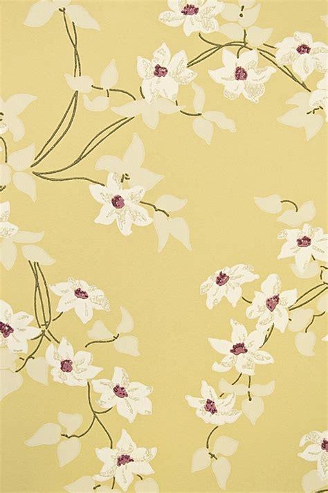 bird wallpaper bq  wallpapergetcom