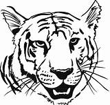 Tiger Coloring Pages sketch template