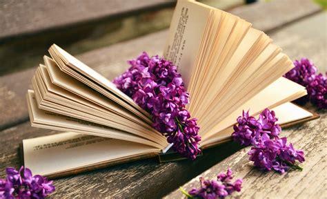 image libre lilas fleur livre page table
