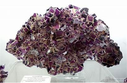 Minerals Fluorite Prodigy Okorusu Polish Pocket Mine