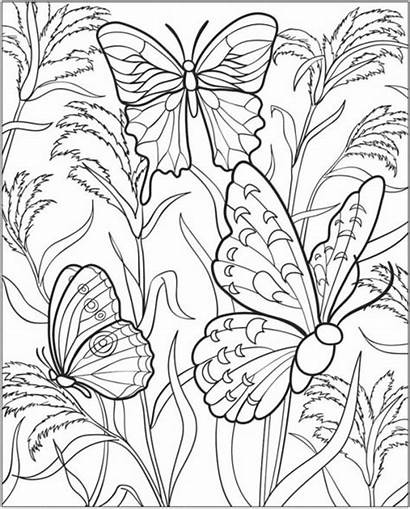 Coloring Pages Gardening Colouring Vegetable Garden Flower