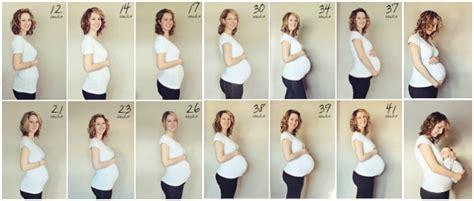 schwangerschaft wochen monate berechnen  wochen