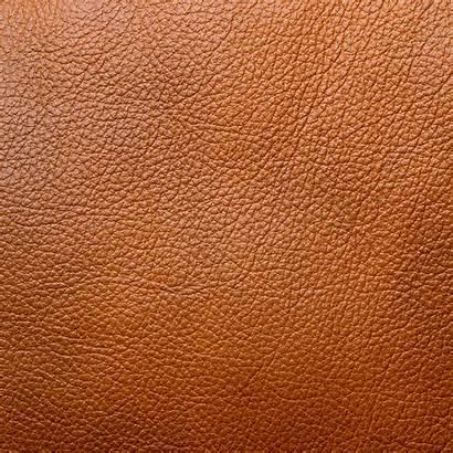 Leather Grain Material Materials Pittella Accessories