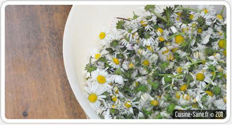 les fleurs comestibles en cuisine cuisine bio en mai je cuisine les fleurs