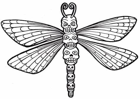 37+ Coloring Pages Dragonfly Gif