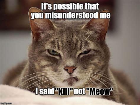 Cat Meow Meme - sarcasm cat quot meow quot imgflip