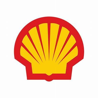 Shell Vetor